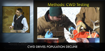 CWD Drives Population Decline