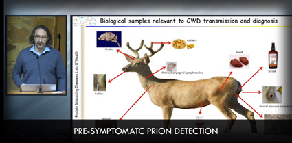 Pre-Symptomatic Prion Detection