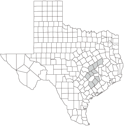 Distribution of the Houston Toad (Bufo