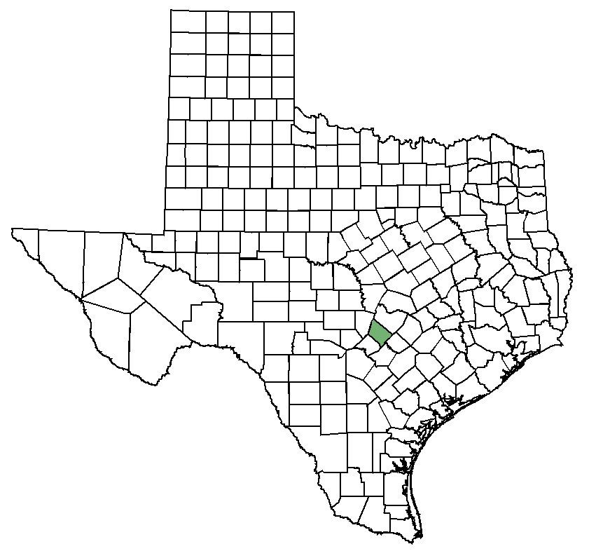 Rice Texas Map