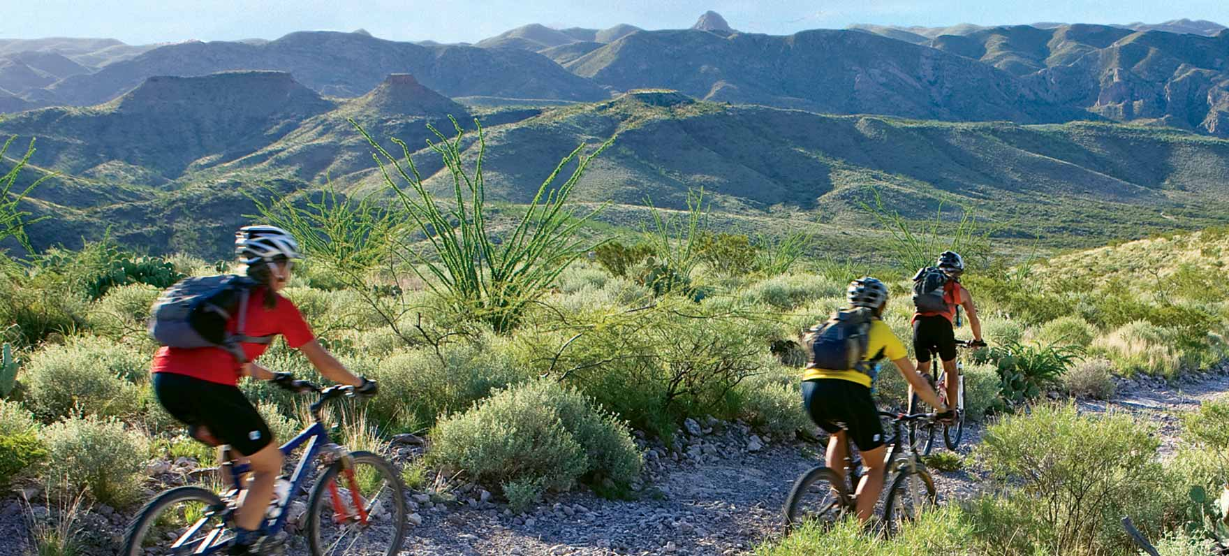 Big Bend mountain biking