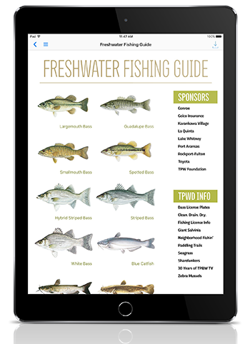 Texas Fishing Guide from Texas Parks & Wildlife Magazine
