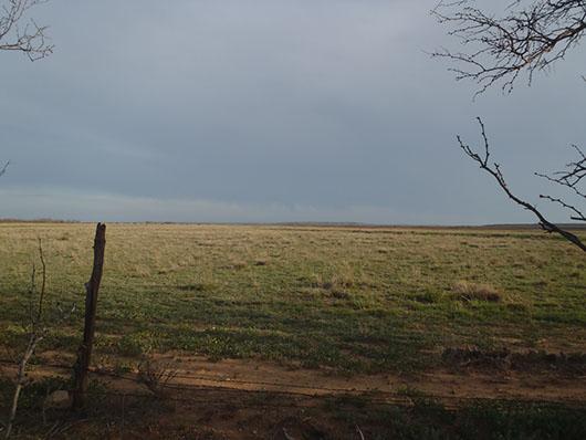 crp-other improved grasslands-134.jpg