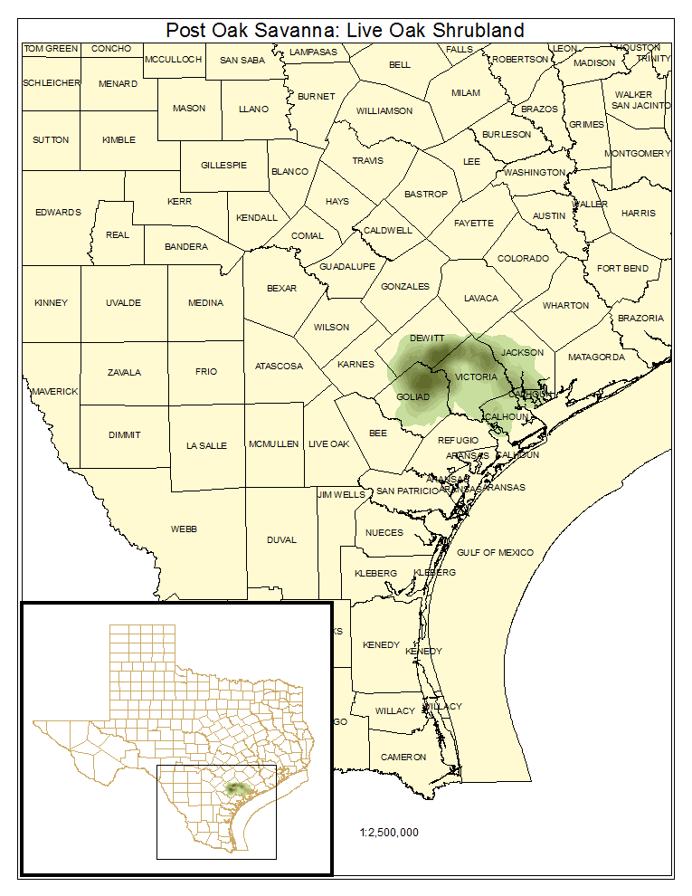 Post Oak Savanna: Live Oak Shrubland