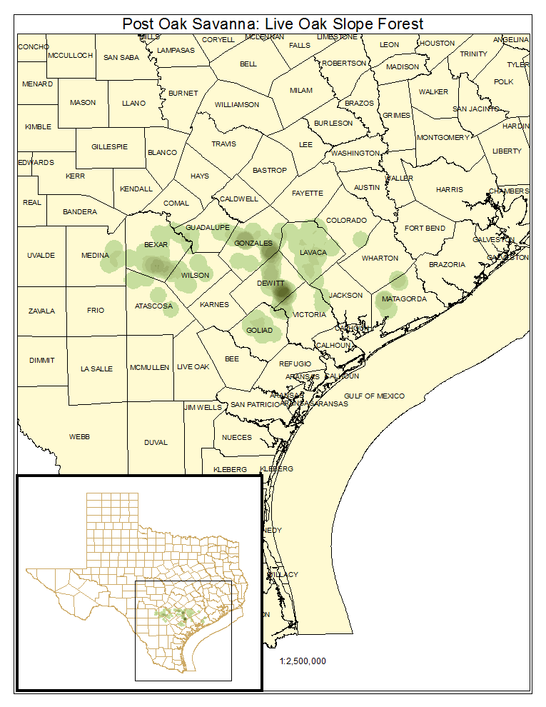 Post Oak Savanna: Live Oak Slope Forest