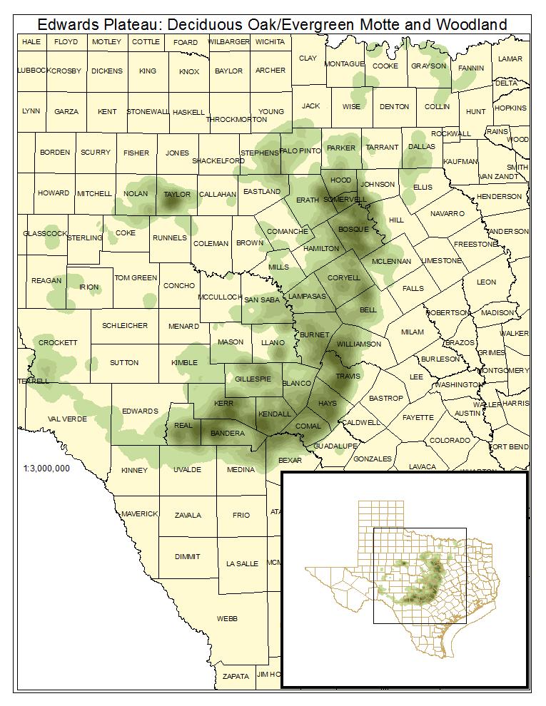 Edwards Plateau: Deciduous Oak / Evergreen Motte and Woodland