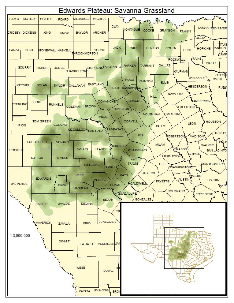 Edwards Plateau: Savanna Grassland