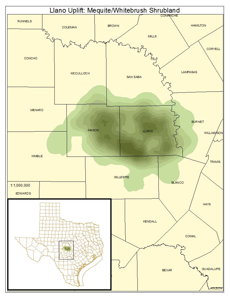Llano Uplift: Mesquite / Whitebrush Shrubland
