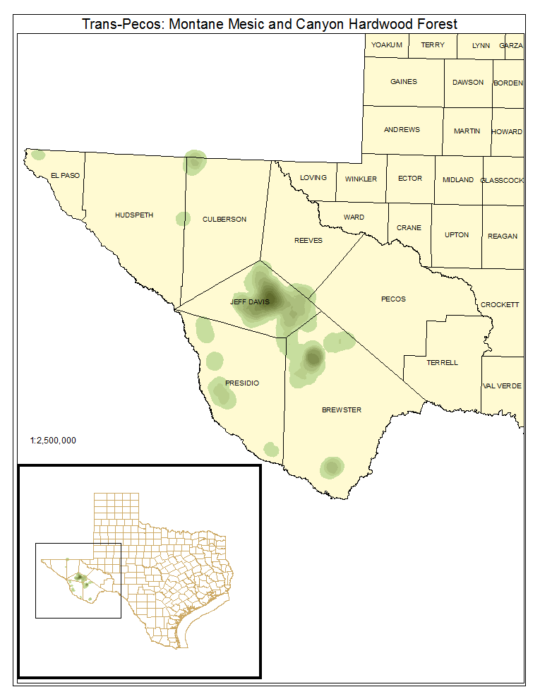 Trans-Pecos: Montane Mesic and Canyon Hardwood Forest
