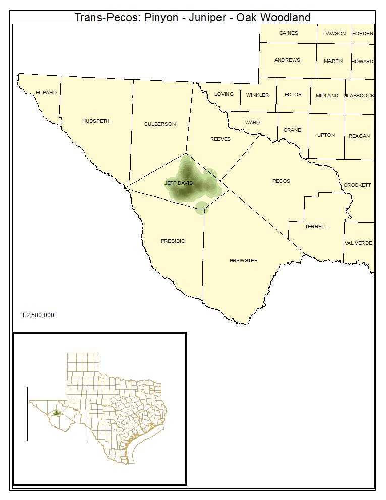 Trans-Pecos: Pinyon - Juniper - Oak Woodland