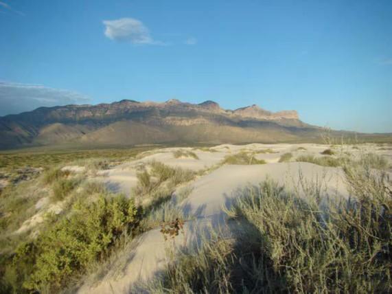 Example Trans-Pecos Gyp Dune.jpg
