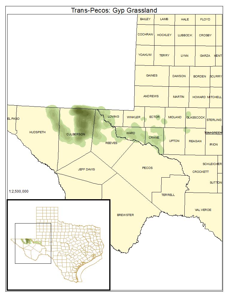 Trans-Pecos: Gyp Grassland