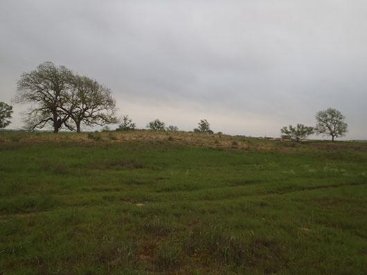 high plains-sand prairie-330 (1).jpg