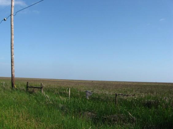 Example Chenier Plain: Fresh and Intermediate Tidal Marsh.jpg