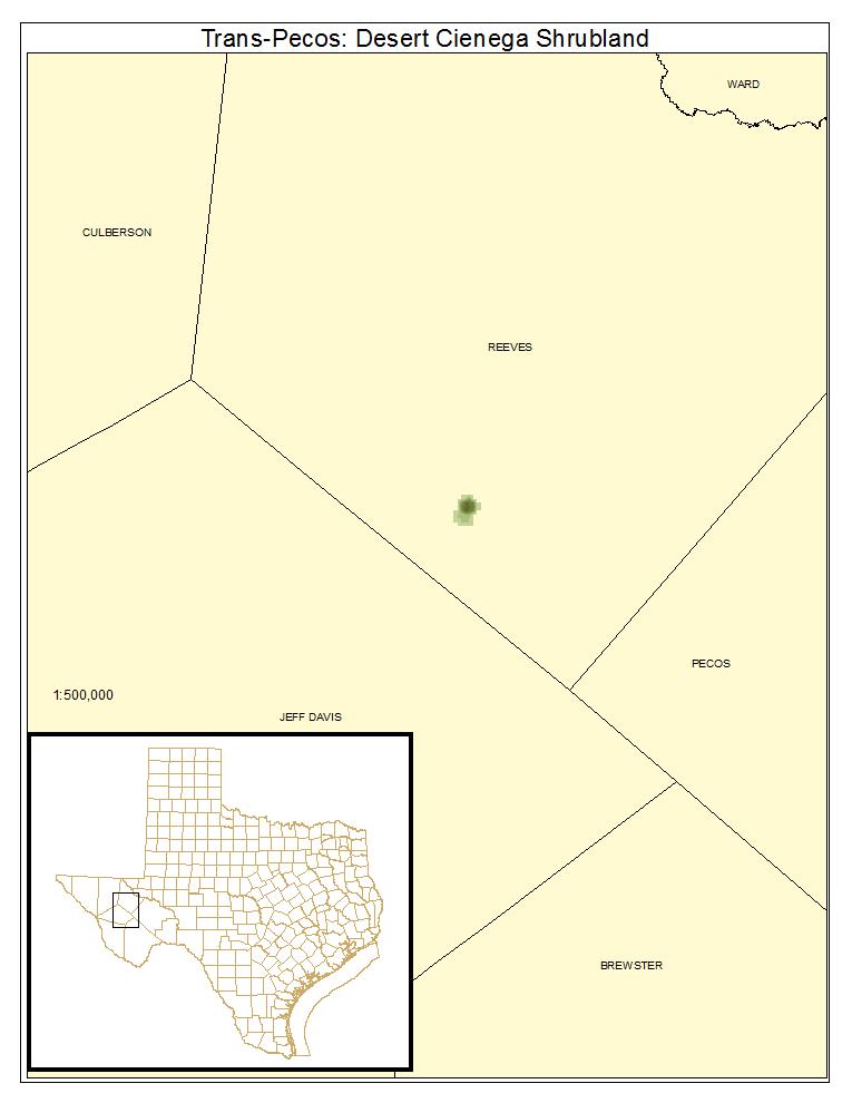 Trans-Pecos: Desert Cienega Shrubland