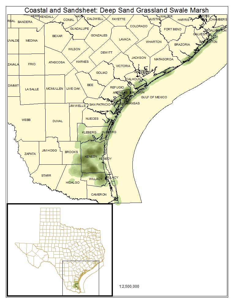Coastal and Sandsheet: Deep Sand Grasslands Swale Marsh