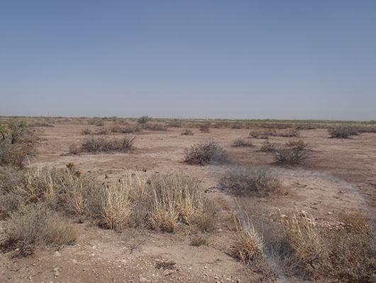 high plains-saline lake-294.jpg