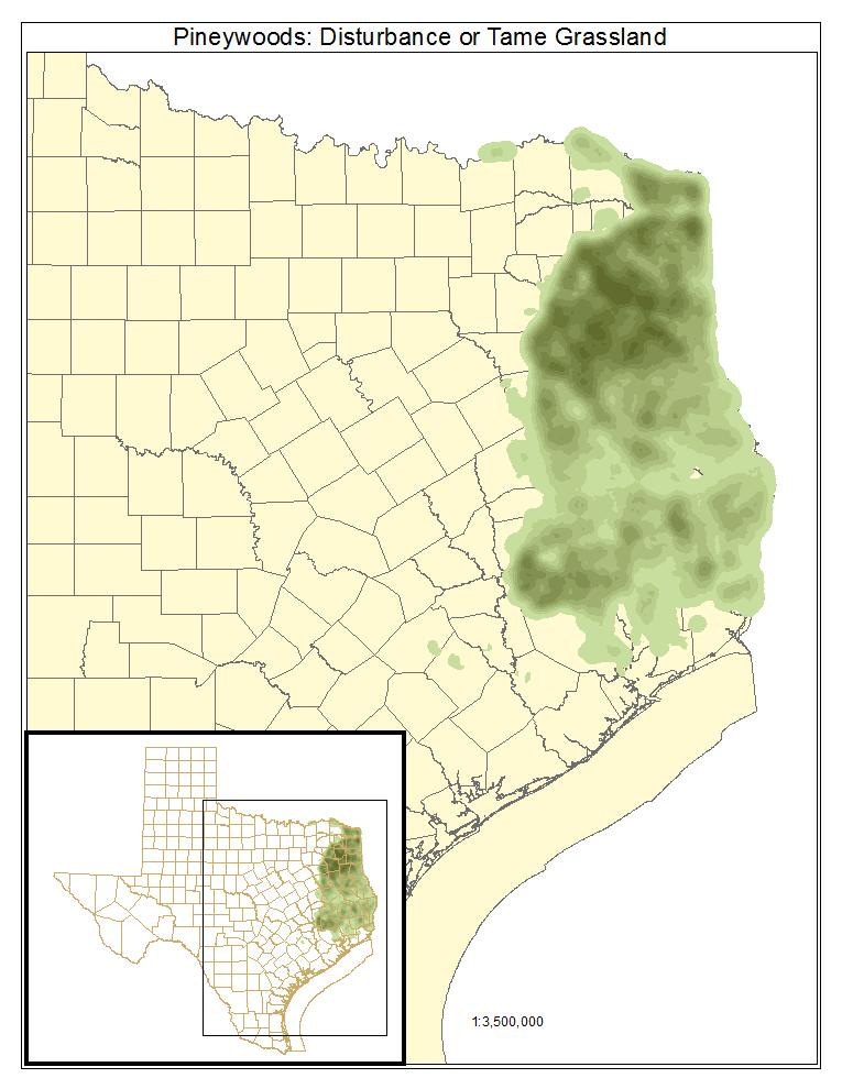 Pineywoods: Disturbance Or Tame Grassland