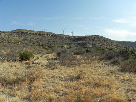edwards plateau-deciduous semi-arid shrubland-200.jpg