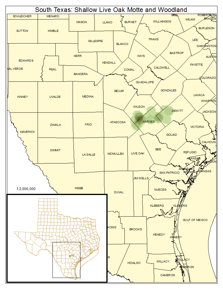 South Texas: Shallow Live Oak Motte and Woodland