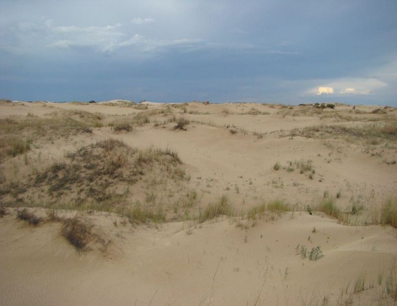 Example High Plains Active Sand Dunes.jpg