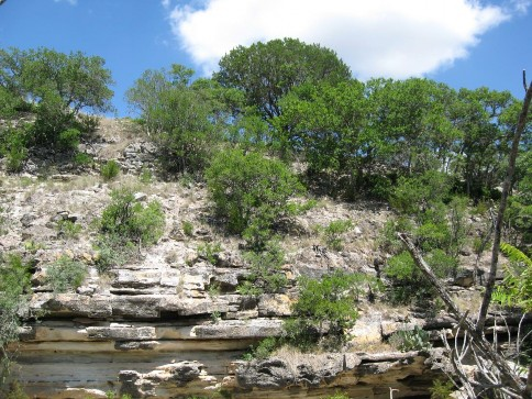Example Edwards Plateau: Wooded Cliff/Bluff.jpg