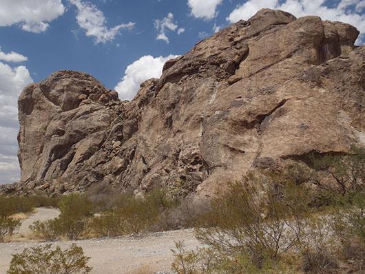 trans pecos-desert volcanic rockland-633.jpg