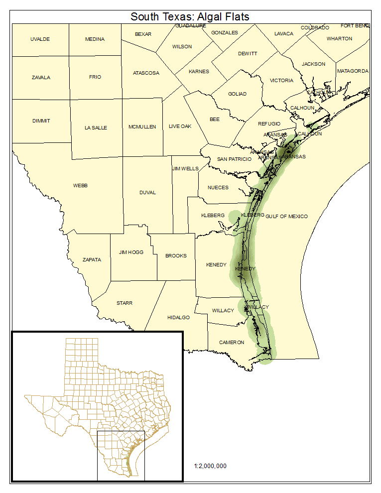 South Texas: Algal Flats