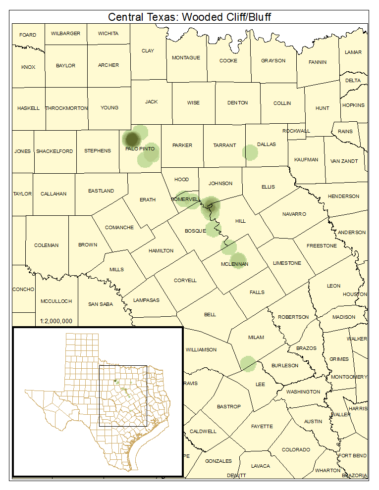 Central Texas: Wooded Cliff / Bluff