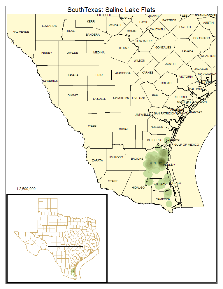 South Texas: Saline Lake Flats