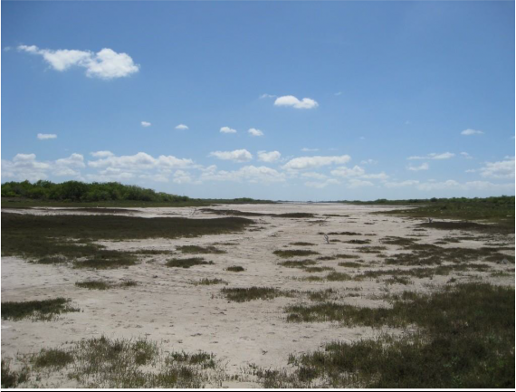 Example South Texas: Saline Lake Flats.png