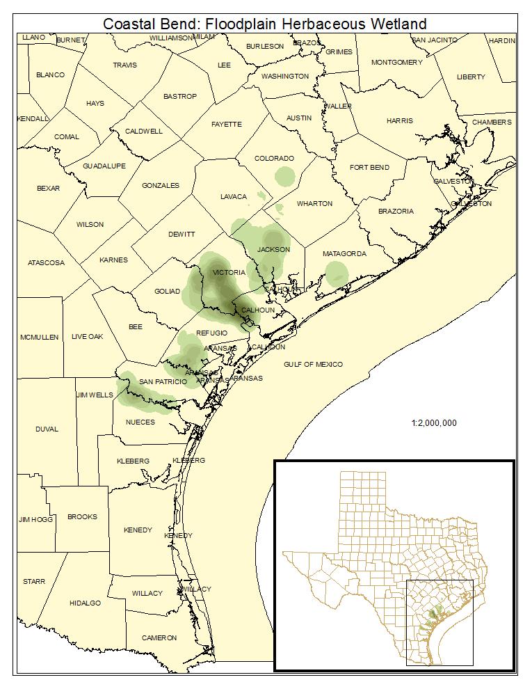 Coastal Bend: Floodplain Herbaceous Wetland