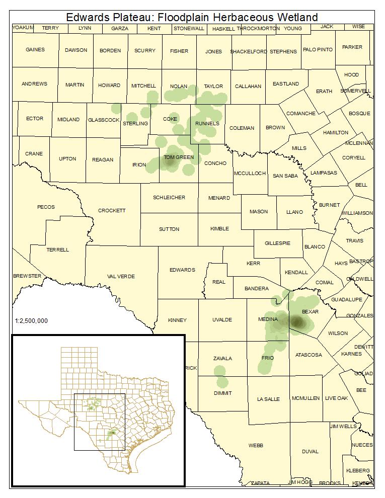 Edwards Plateau: Floodplain Herbaceous Wetland