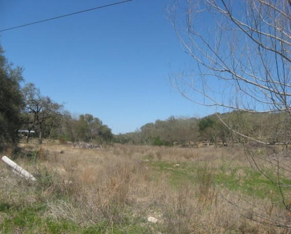 Example Edwards Plateau: Riparian Herbaceous Vegetation.jpg