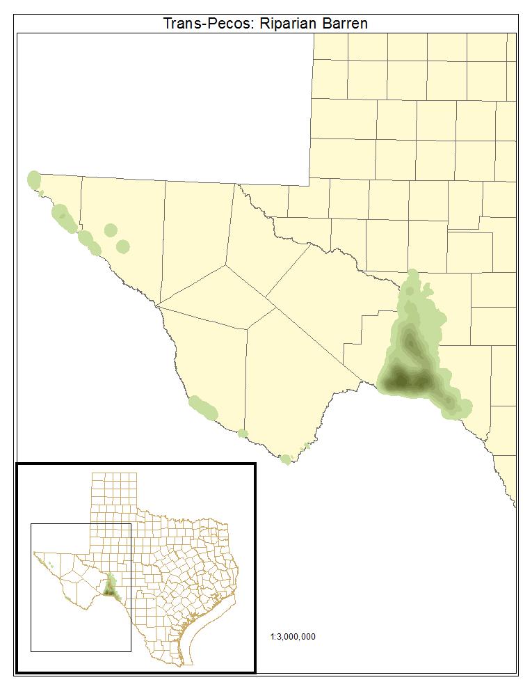 Trans-Pecos: Riparian Barren