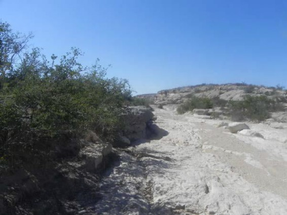 Example Trans-Pecos: Riparian Barren.jpg