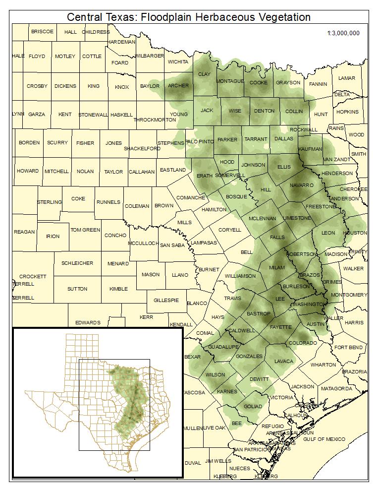 Central Texas: Floodplain Herbaceous Vegetation