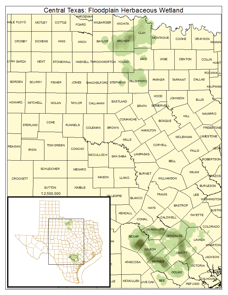 Central Texas: Floodplain Herbaceous Wetland