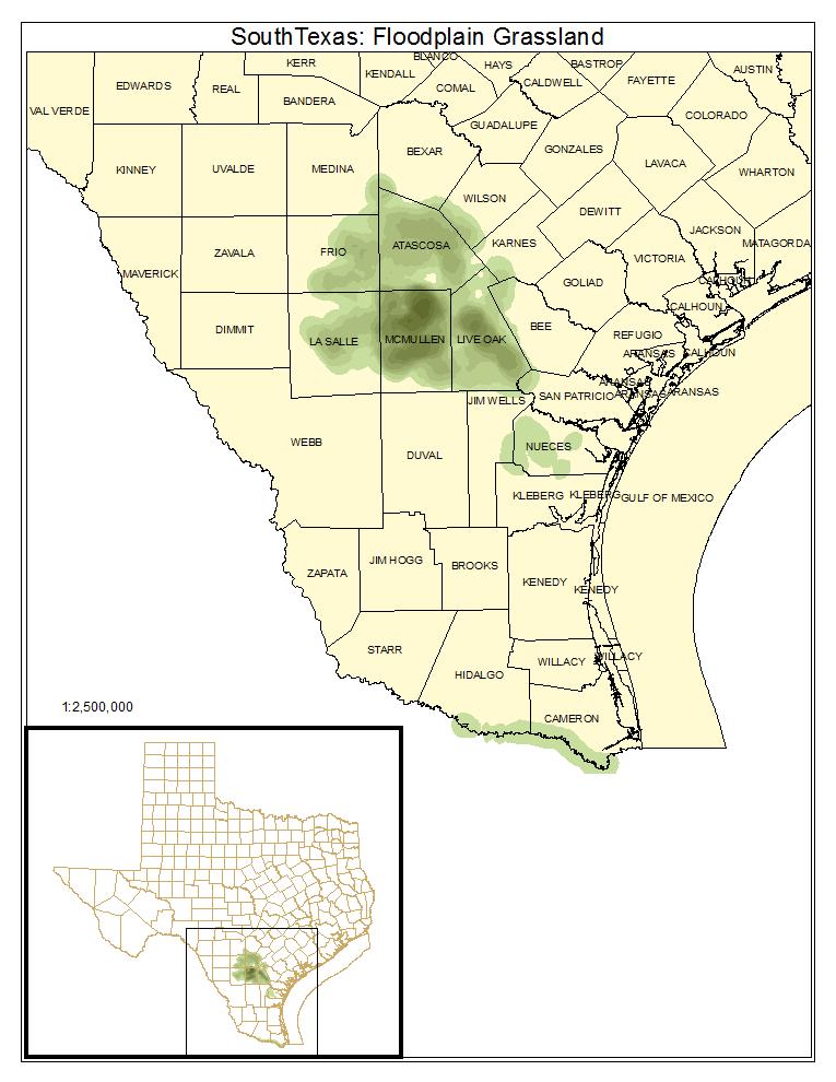 South Texas: Floodplain Grassland