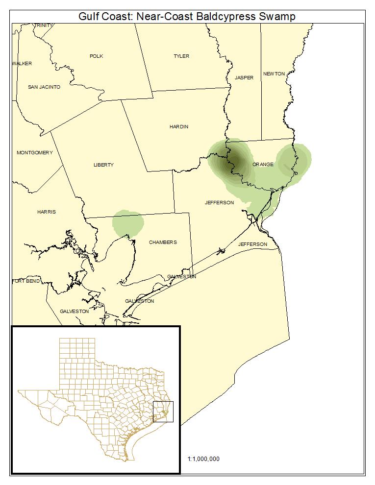 West Gulf Coastal Plain Near-Coast Large River Swamp — Texas Parks ...