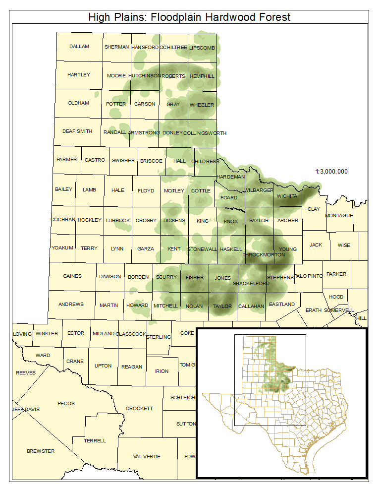 High Plains: Floodplain Hardwood Forest