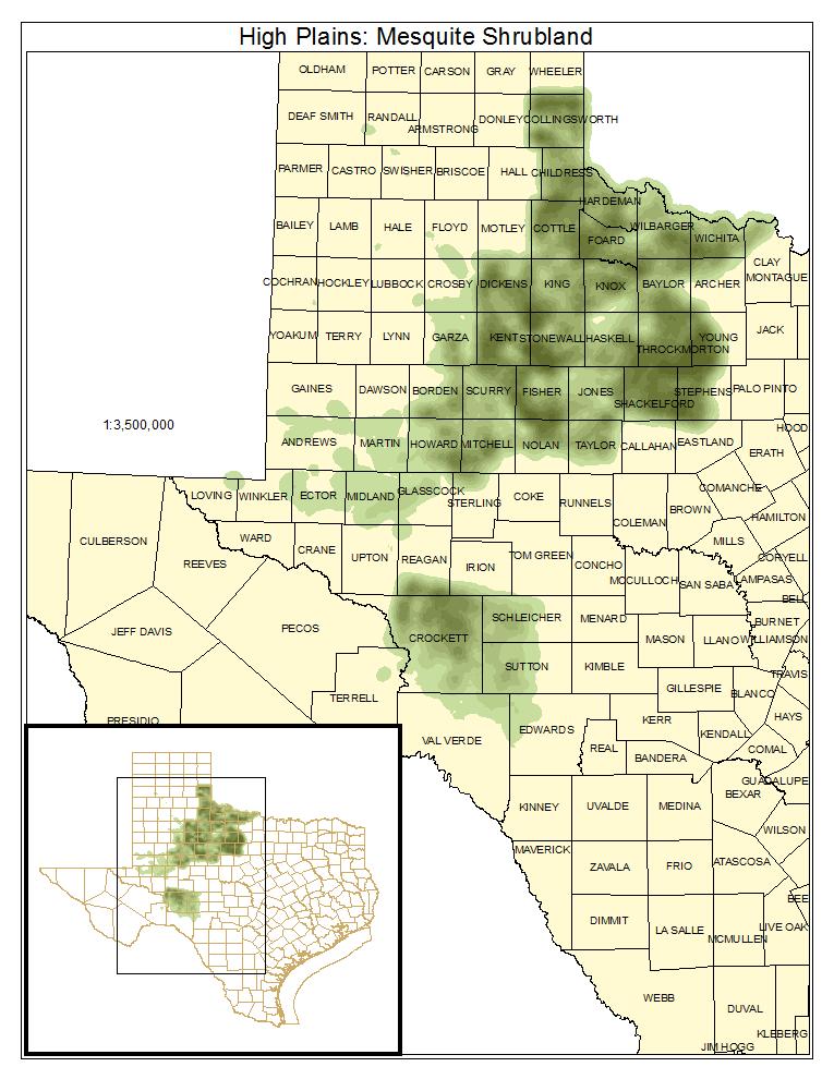 High Plains: Mesquite Shrubland