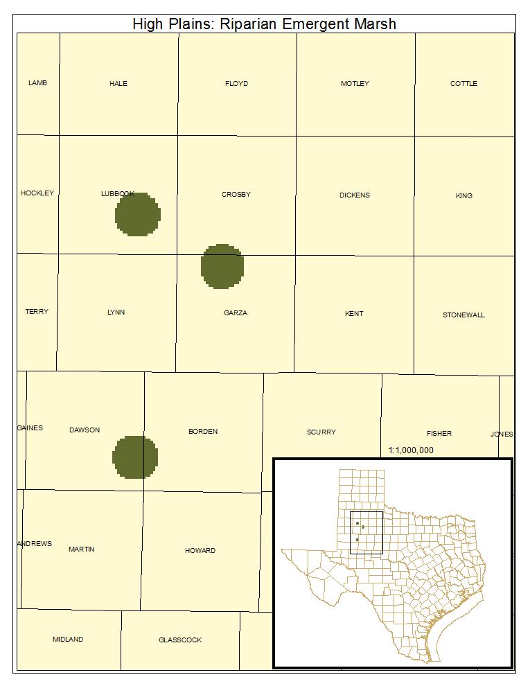 High Plains: Riparian Emergent Marsh