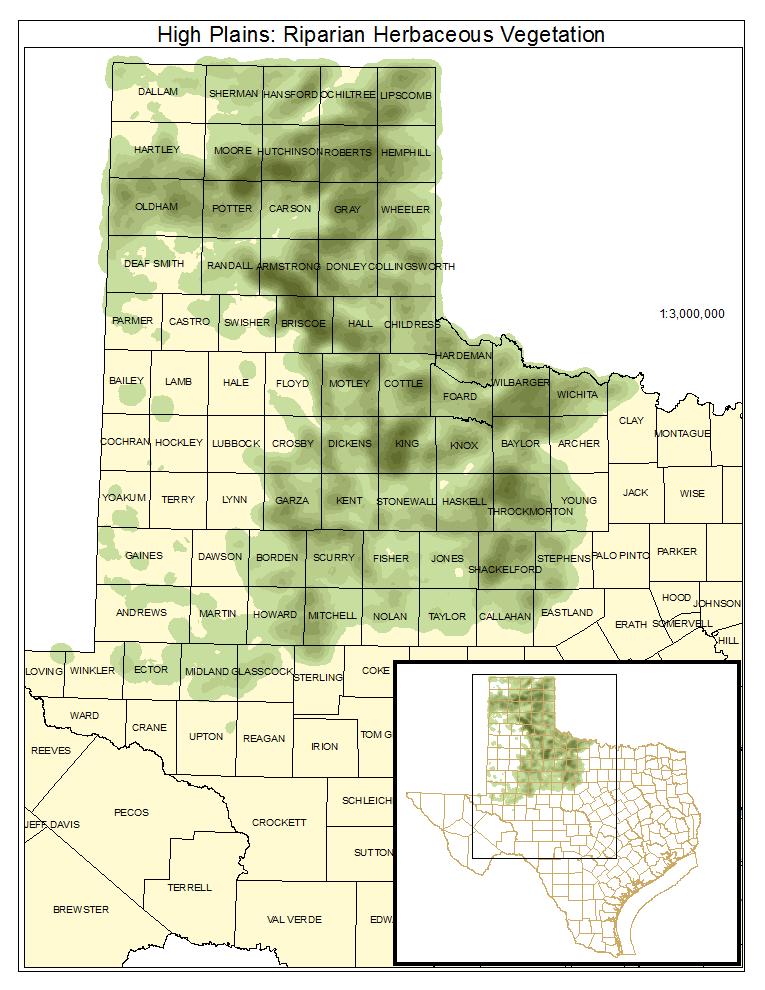 High Plains: Riparian Herbaceous Vegetation