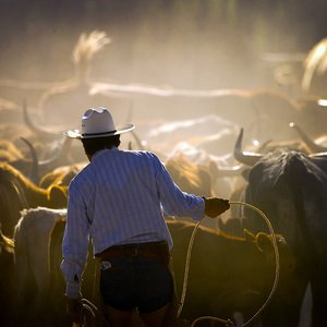 Big Bend Ranch-Cattle Drive_final.jpg