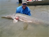 Joe Williams Gar 7-4-11