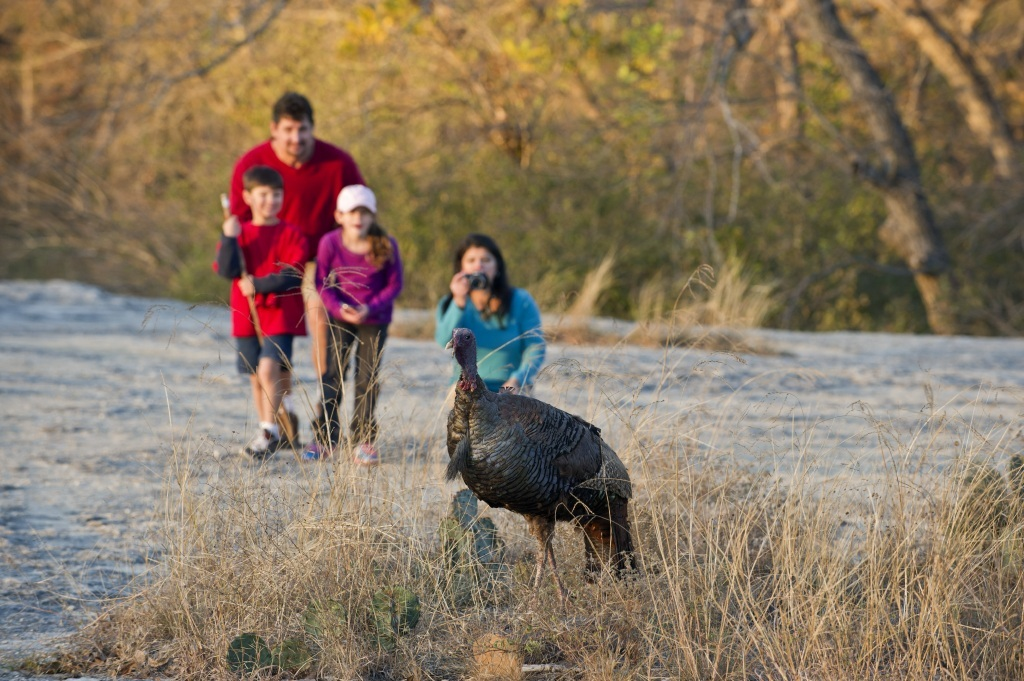 Nature Viewing © Texas Parks and Wildlife Department