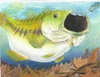 State-fish Art Contest 2008 - 1st Kevin Hopper