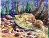 State-fish Art Contest 2008 - 2nd Dominic Nedzelskyi
