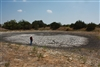 Dry Ranch Stock Pond Near Gatesville in Coryell County